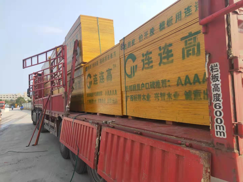 广西容县的林产工业产值首次超过50亿元