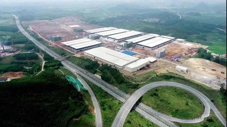 广西将打造成为全国最大国家储备林木核心基地